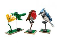 LEGO Ideas 21301 Birds